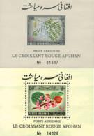 Ref. 78614 * NEW *  - AFGHANISTAN . 1962. RED CRESENT'S  DAY. DIA DE LA MEDIA LUNA ROJA - Afghanistan