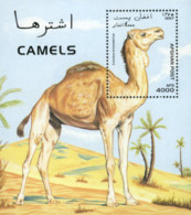 Ref. 47353 * NEW *  - AFGHANISTAN . 1997. CAMEL. CAMELLO. - Afghanistan