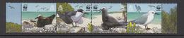 2007 Pitcairn Islands WWF Sea Birds Terns, Noddies Strip Of 4 MNH - Ongebruikt