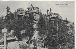 AK 0075  Bayerischer Wald - Hohenstein / Verlag Seidel Um 1907 - Böhmen Und Mähren