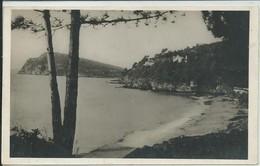 Le Lavandou-Environs-Plage Du Débarquement Du 15 Août 1944,au Fond Le Cap Nègre (CPSM) - Le Lavandou