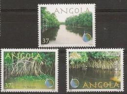 ANGOLA 2008 Mangroves - Angola