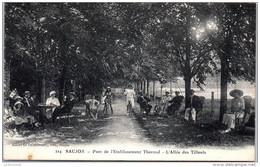 17 SAUJON - Parc De L'établissement Thermal - Saujon
