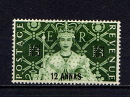 BRITISH  POSTAL  AGENCIES  IN  EASTERN  ARABIA    1953    Coronation  12a On 1/3 Deep Yellow Green    MNH - Stamps