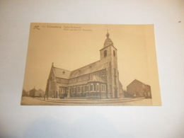 Kortenberg:cortenberg Kerk Van Den H.amandus - Kortenberg