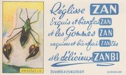 Buvard - Reglisse ZAN - Délicieux Zanbi -  Insecte Anisoscelis - - Ohne Zuordnung