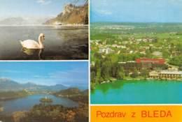 Pozdrav Z BLEDA - Slovénie