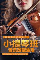 T89-87 ]  Violin Violon Geige Musical Instrument Musikinstrument Instrument De Musique ,  Prestamped Card - Music