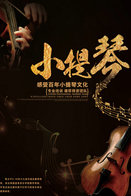 T89-90 ]  Violin Violon Geige Musical Instrument Musikinstrument Instrument De Musique ,  Prestamped Card - Music