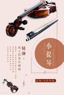T89-92 ]  Violin Violon Geige Musical Instrument Musikinstrument Instrument De Musique ,  Prestamped Card - Music