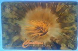 7CDMI Anemonia EC$10 - Dominica