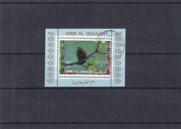 Oiseaux - Moineaux - Umm Al Qiwain - Bloc Oblitéré - Couleurs Décalées - Sparrows