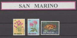 San Marin : Joli Lot De Timbres Obiltérés Et Neuf * - Saint-Marin
