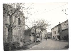 Félines - éd Du Vieux Port - La Poste Véhicule Personnages - France