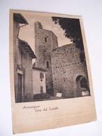 Arezzo - Montemignaio Torre Del Castello - Arezzo
