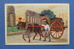 Cartolina Costumi - Roma - Costumi Romani - Carro Da Vino - 1910 Ca. - Cartoline