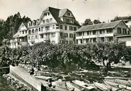 CPSM Schloss U. Hôtel Hertenstein                                                               L2697 - Unclassified