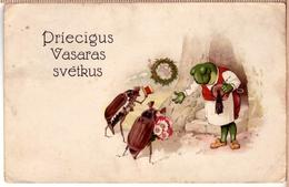 Beetles And Dressed Frog Latvian PC 1930s - Animals