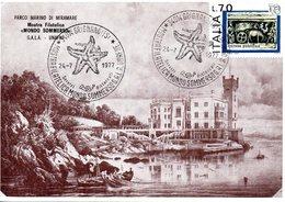 TRIESTE CARTOLINA - Trieste