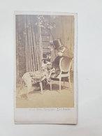 Ancienne Photo De Chien Donnant La Patte à Son Maître - Ghemar Frères (Bruxelles) - Vers 1860 - Photos