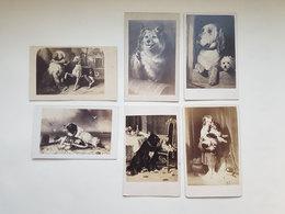 Lot 6 Anciennes Photos De Peintures De Chiens - Bulla Frères/Goupil & Cie/Landseer 710 Beauty's Bath - Vers 1860 - Antiche (ante 1900)