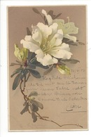 20759 - Klein Branche De Fleurs Série 1384 Flowers - Klein, Catharina