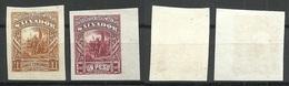 EL SALVADOR 1892 ESSAY Plate PROOF Michel 54 & 58 (*) - El Salvador