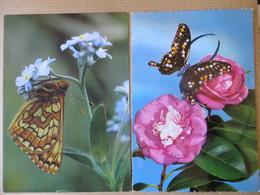Lot De 6 Cpsm Fantaisie Thème Fleurs Rose Orchidée  Et Papillon Dont Une Bonne Fête Papa Et Une Heureux Annivesaire - Ansichtskarten