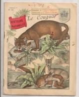 1893 CAHIER  ECOLE / COUVERTURE ILLUSTREE LE COUGUAR   E1 - Blotters