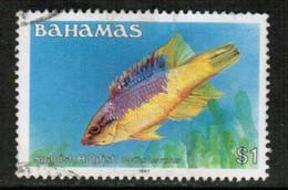 BAHAMAS  Scott # 615 VF USED (Stamp Scan # 430) - Bahamas (1973-...)
