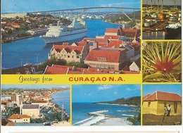 CPM, Grenada , Greetings From Curacao  , N.A. Ed. Vandrop Avec Timbre - Grenada