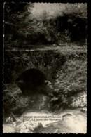 74 - Le Grand-Bornand - Thônes Grand-Bornand 950m Le Pont Des Romains #09101 - Faverges