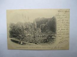 SALAZIE  ( REUNION ) -  PRECURSEUR DE 1901  -    -  TIMBRE TYPE SAGE     TTB - La Réunion