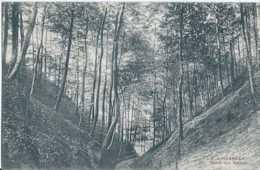 Linkebeek - Vallée Des Artistes - Pas Circulé - TBE - Linkebeek