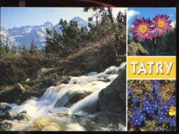 CPM Non écrite Espagne VALLE DE ARAN Santet Y Refugio Del Parque Nacional Plabatalle - Slovacchia