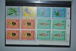 Luxembourg 1977 Caritas Blocs De 4 MNH Complet - Unused Stamps