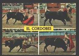 Toros - Manuel Benitez El Cordobes - Corrida