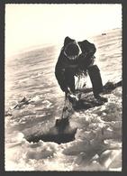 Esquimaux / Eskimo's / Inuit / Indian - Pêche Sous La Glace / Fishing - Photo Card - Amérique