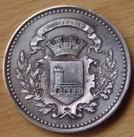 Médaille Comice Agricole De PONTARLIER (25) L'abergement Sainte-Marie 1886 - Professionnels / De Société