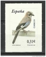 SPAIN 2008  EURASIAN JAY  SA - Uccelli