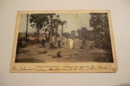 CPA AFRIQUE GAMBIE BATHURST. Une Plantation Dans La Reserve De La Gambie. Landscape In The Upper River. 24/03/1912. - Gambie