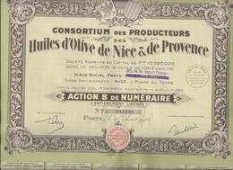 ACTION B DE NUMERAIRE - CONSORTIUM DES PRODUCTEURS DES HUILES D'OLIVE DE NICE ET DE PROVENCE -1928 - Agriculture