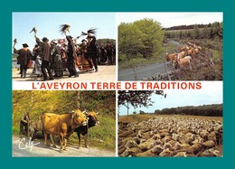 12 Aveyron ( Multivues ) 027 - France