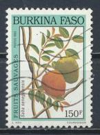 °°° BURKINA FASO - Y&T N°872 - 1993 °°° - Burkina Faso (1984-...)