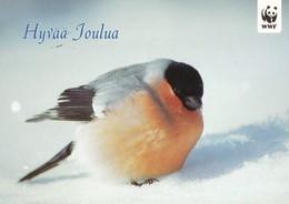 Bird - Oiseau - Vogel - Uccello - Pássaro - Pájaro - Bullfinch - (Pyrrhula Pyrrhula) WWF Panda Logo - Birds