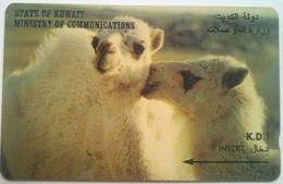 39KWTB Two Camels - Kuwait