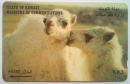 23KWTA Two Camels - Kuwait