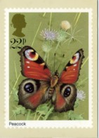 PEACOCK  BUTTERFLIES  Reproduced From A Stamp - Francobolli (rappresentazioni)