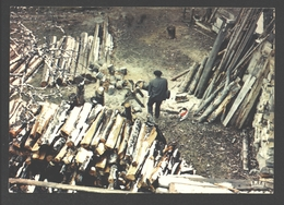 Scieur Montagnard - Houthakker / Bûcheron / Lumberjack - Berufe