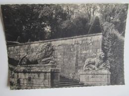 Vaux Le Vicomte. Les Lions De Lespagnandelle. Escalier De La Grande Terrasse. Cliche Jean Vincent. - Vaux Le Vicomte